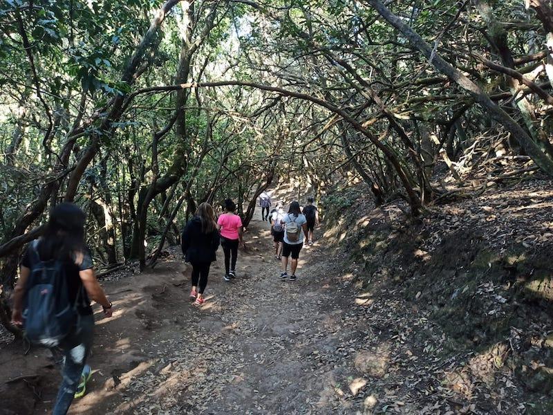 Visita desde Ataretaco al Parque Rural de Anaga